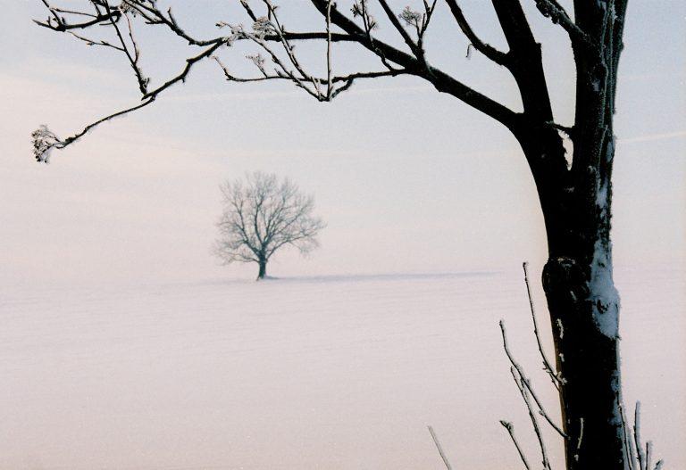 Landscapes_012